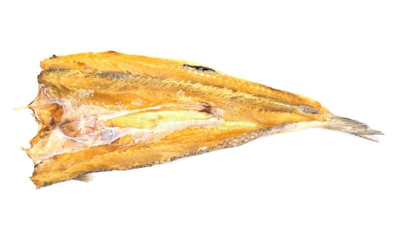 Droge vissen Droge die Vissen op witte achtergrond worden ge?soleerd stock foto