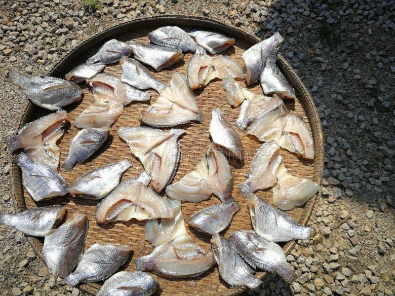 Droge vissen door lokale manier in Thailand stock foto's