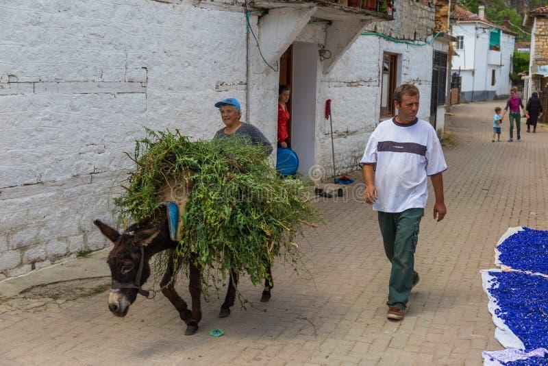 Drogende korenbloemen op de straten van het oude dorp royalty-vrije stock foto's