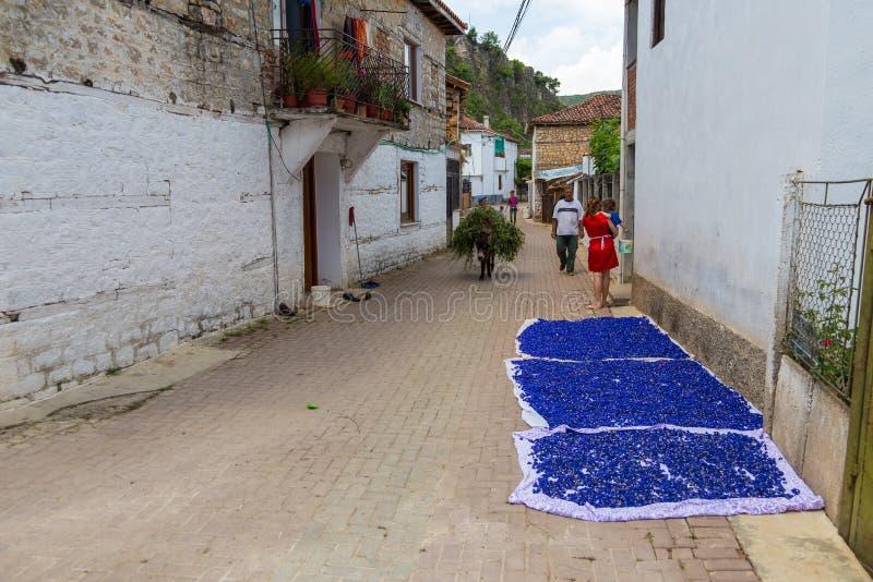 Drogende korenbloemen op de straten van het oude dorp stock afbeeldingen