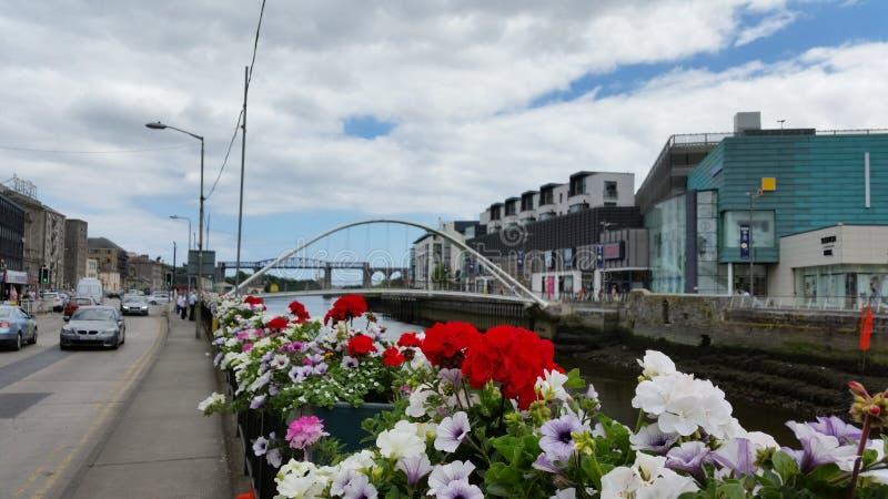 Drogheda Irland royaltyfri foto