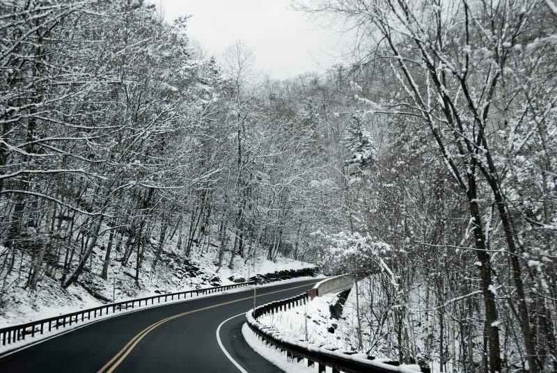 drogi śnieżna drzew zima zdjęcia royalty free