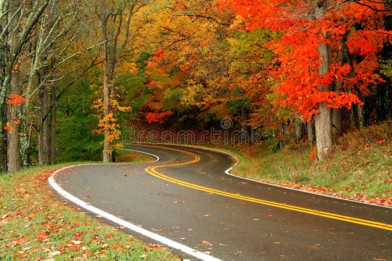 drogi jesienią zdjęcie stock