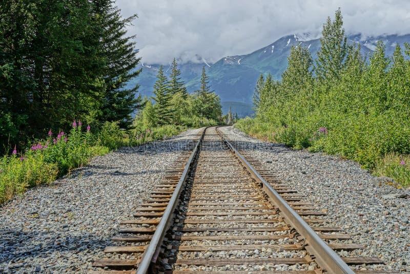 drogi kolejowej na pociąg na śladowe zdjęcie stock