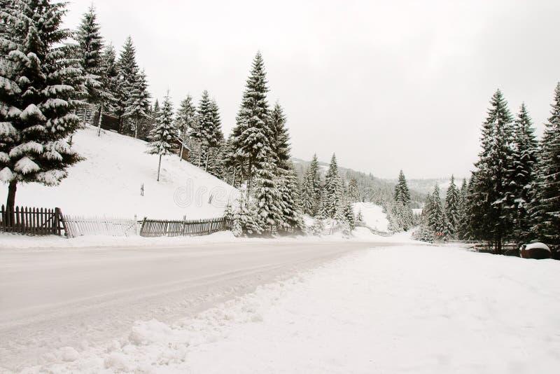drogi zimy. zdjęcie royalty free