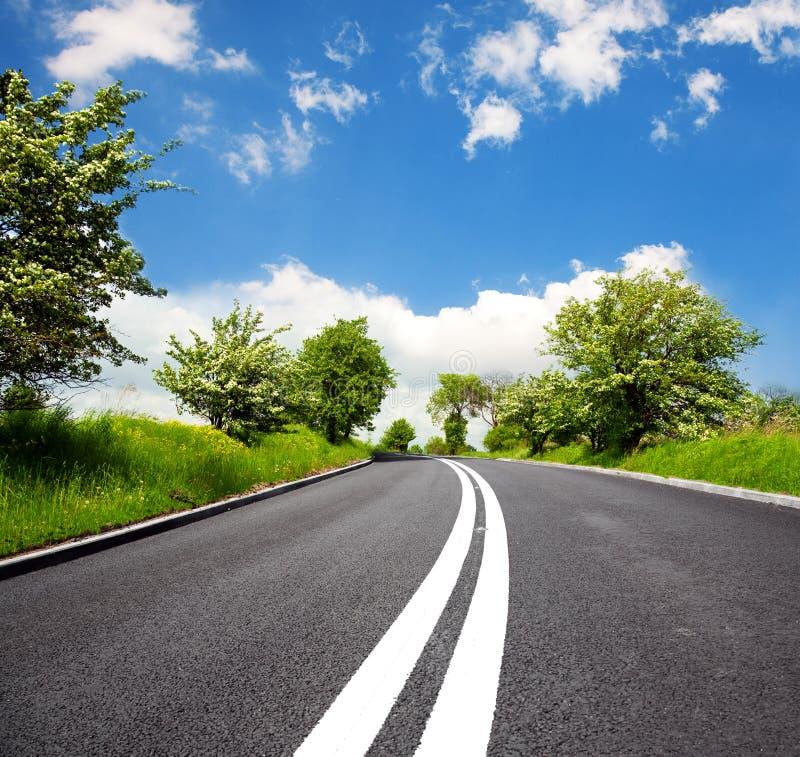 drogowa wiosna fotografia stock