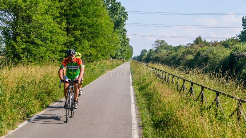 Drogowi cykliści wzdłuż kolarstwo pasa ruchu wzdłuż Naviglio Pavese od Pavia Mediolan w wiośnie, fotografia stock