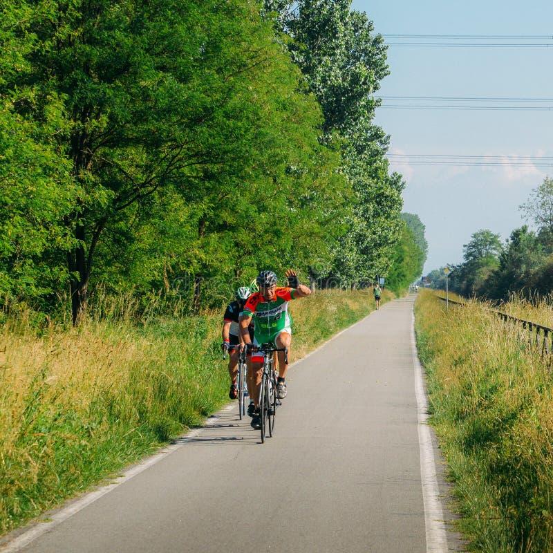 Drogowi cykliści wzdłuż kolarstwo pasa ruchu wzdłuż Naviglio Pavese od Pavia Mediolan w wiośnie, zdjęcia royalty free
