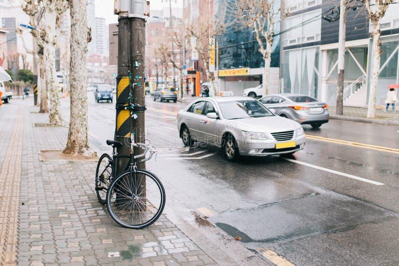 Drogowy bicykl na miasto ulicie park przy drzewnym sideroad, miastową sceną, drogowym rowerem i samochodem, zdjęcia stock