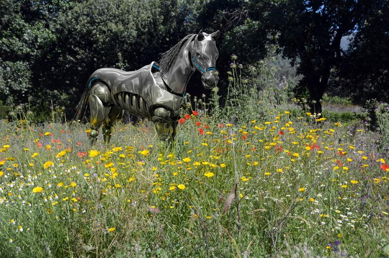 Droid horse alone in a fild of flowers stock photography