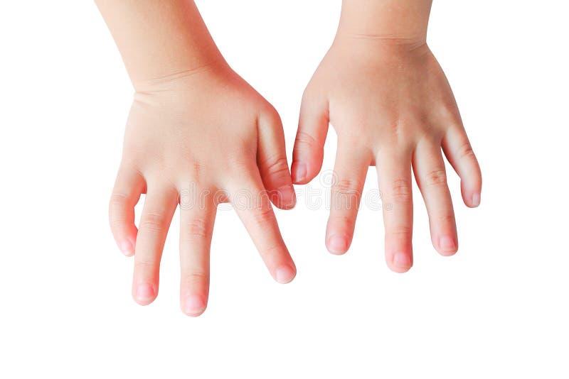 Droit et mains gauches de vue supérieure de fille asiatique de petit enfant d'isolement sur le fond blanc avec le chemin de coupu photo stock