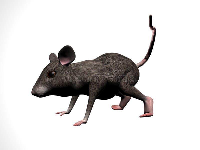 Droite de dessin animé de souris illustration libre de droits