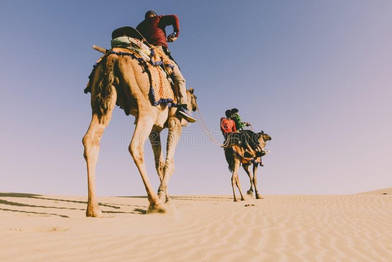 Dromedário com o turista no deserto de thar fotografia de stock royalty free
