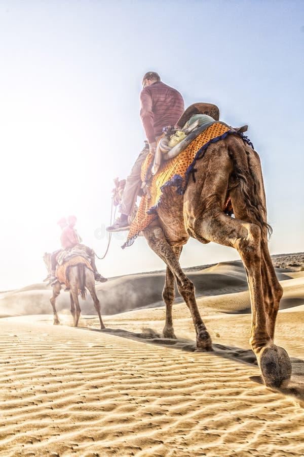 Dromedar mit Touristen in der Thar-Wüste stockbild