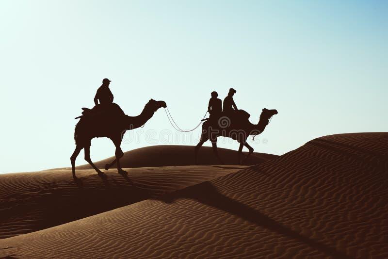 Dromedario con il turista nel deserto di Thar fotografia stock libera da diritti