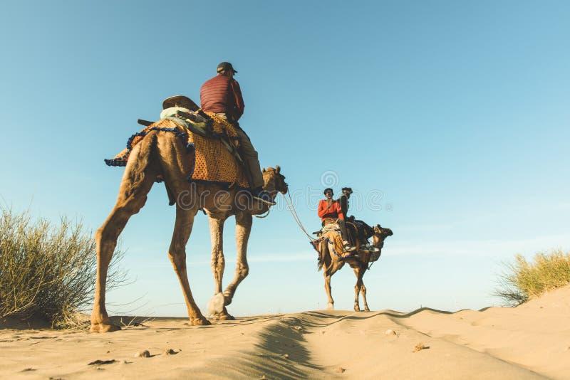 Dromedaris met toerist in de woestijn van Thar stock foto