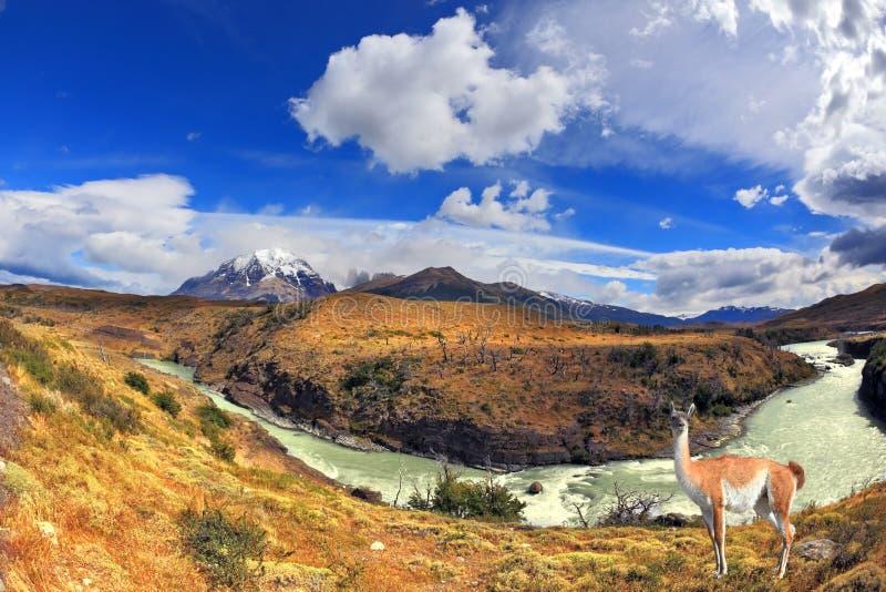 Dromenland Patagonië royalty-vrije stock afbeeldingen