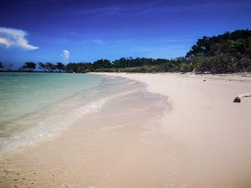 Dromerig strand, Cuba ???????? stock afbeelding