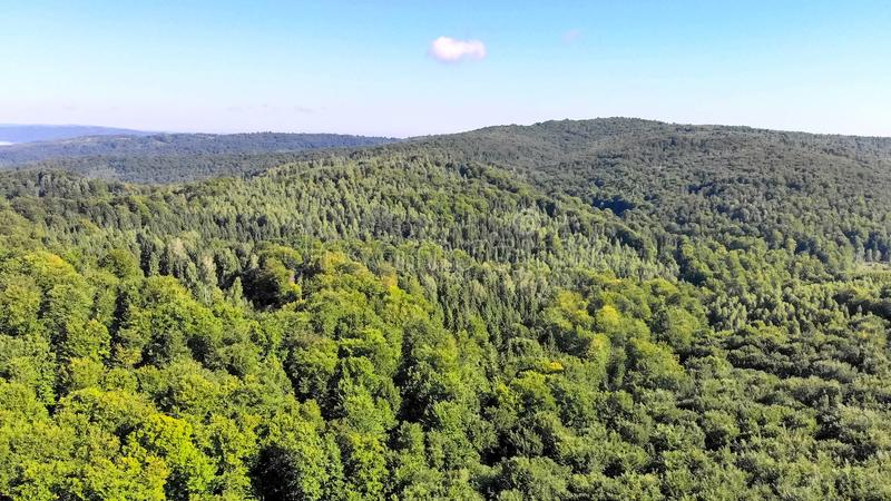 Drone Aerial fly over the mountains covered with green forest, a stock photography