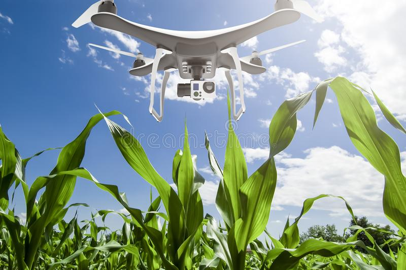 Drone with digital camera flying over cultivated field royalty free stock image