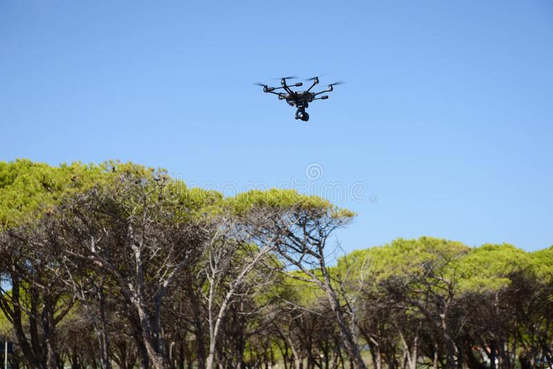 Drone hovering over trees royalty free stock image