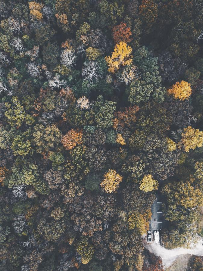 Drone image of a multicolored forest in the Southeastern United States with fall foliage. stock image