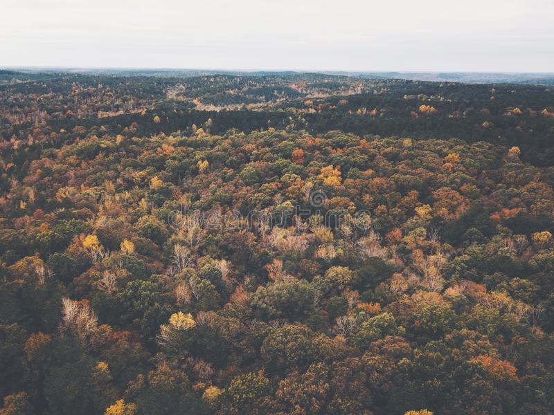 Drone image of a multicolored forest in the Southeastern United States with fall foliage. This was shot in rural Alabama with rolling hills. The rich autumn stock image