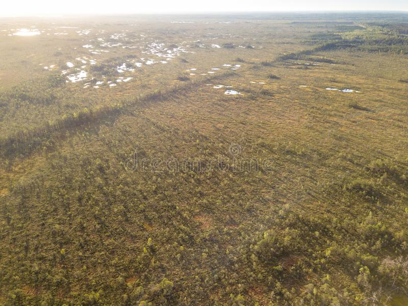 Drone Photo of Colorful Moorland in Early Summer Sunrise royalty free stock photos