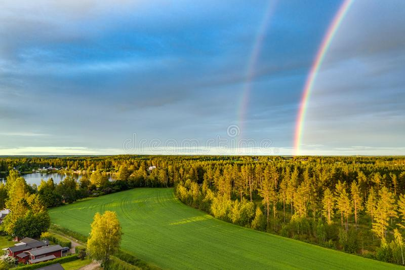 Drone photo, rainbow over summer pine tree forest,green wheat field, very clear skies and clean rainbow colors. Scandinavian royalty free stock image