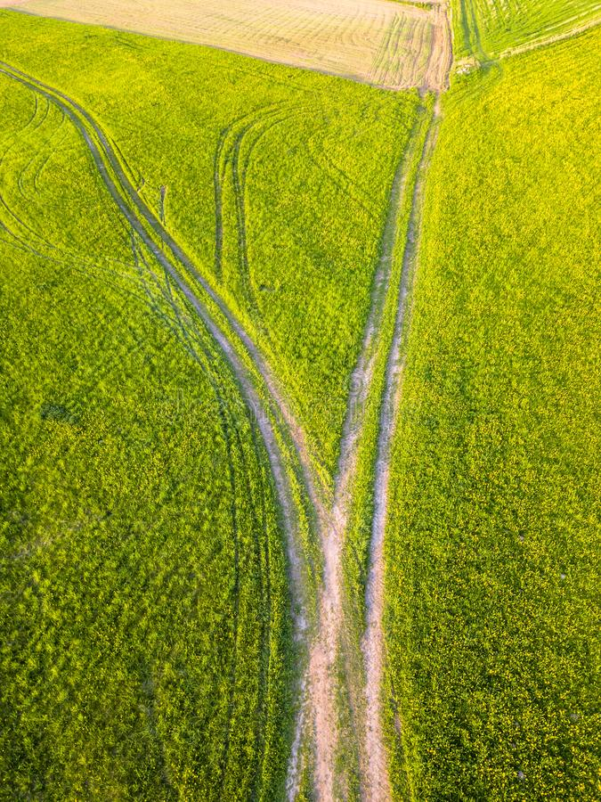 Drone Photo of the Road Between Fields in Colorful Early Spring. In Countryside Village - Surrounded with Dandelions. Top Down View royalty free stock photos