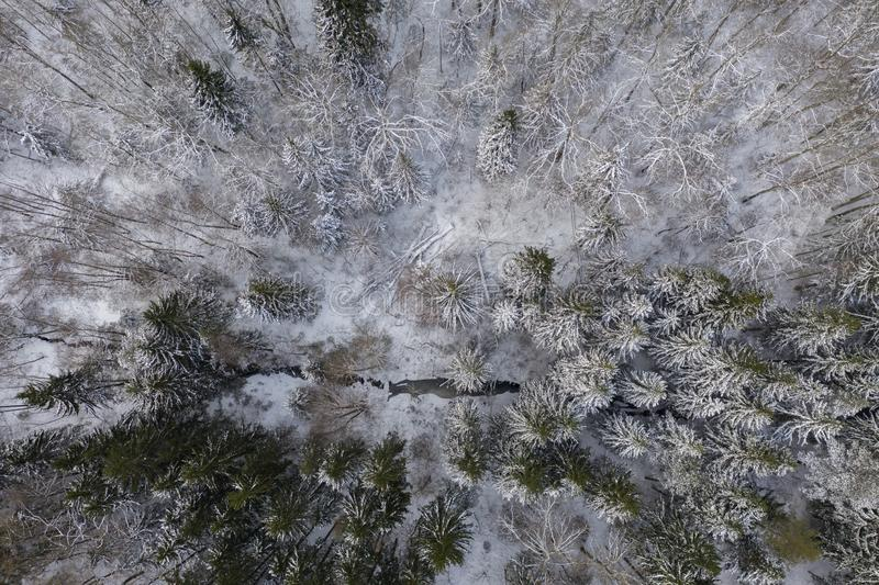 Drone photography of winter forest and stream stock photo