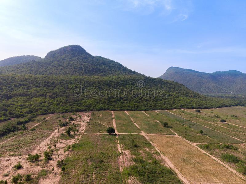 Drone shot aerial view scenic landscape of agriculture farm against mountain and nature forest. Above, agiculture, angel, asia, background, beautiful, birds stock photos