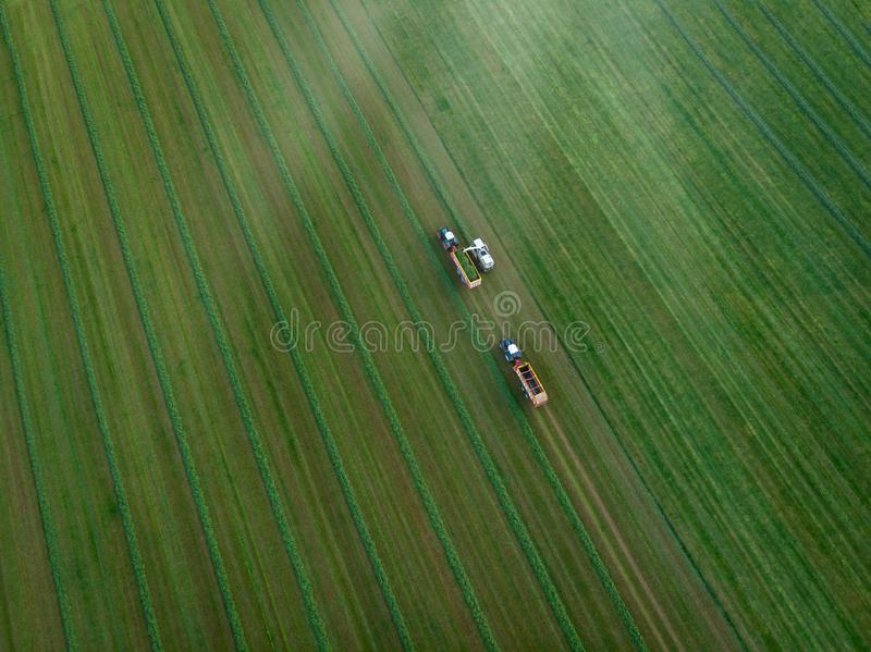 Drone shot of agricultural field with tractors harvesting hay. Aerial view of agricultural green field and tractors harvesting hay royalty free stock photos
