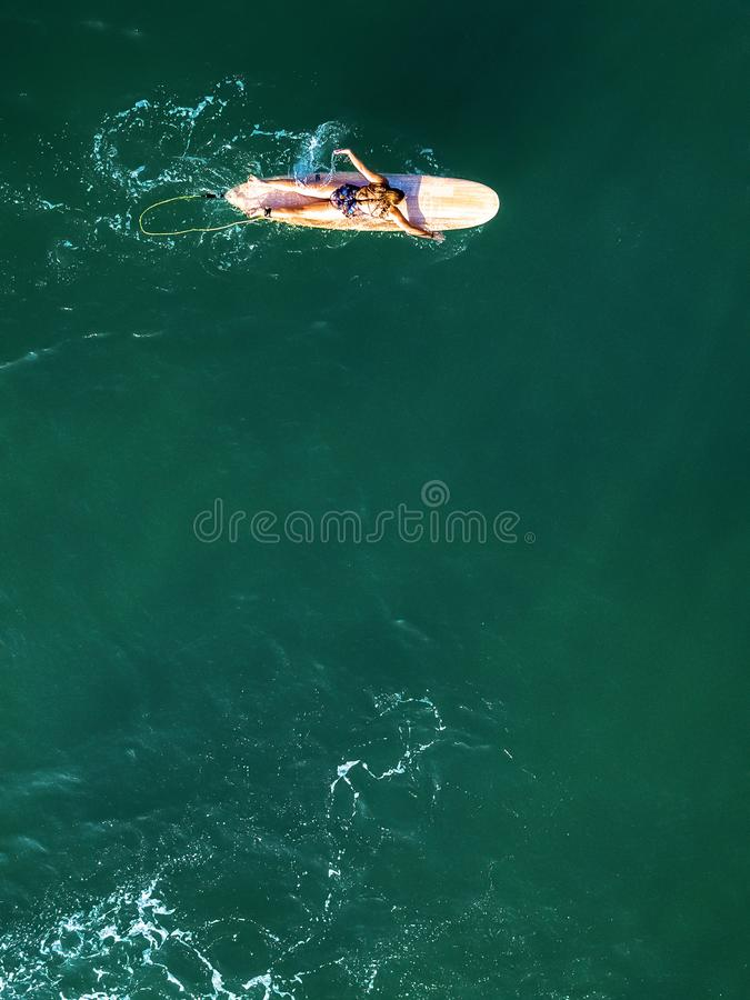Drone view of female surfer paddling alone royalty free stock image