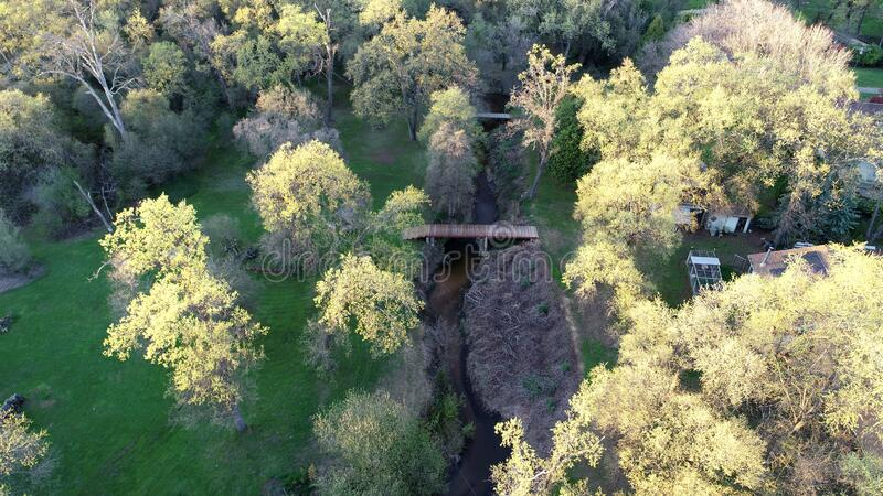 Drone view of the forest royalty free stock photos