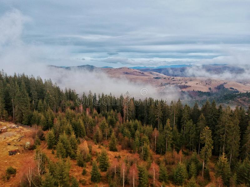 Drone view of a mountain and trees in Transylvania stock images