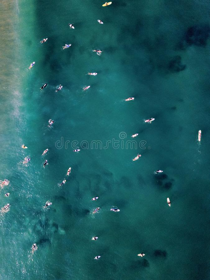 Drone view of surfers in the ocean royalty free stock images