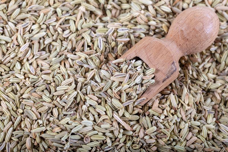 Droog Anise Seed of Anijszaad als als Achtergrond stock foto