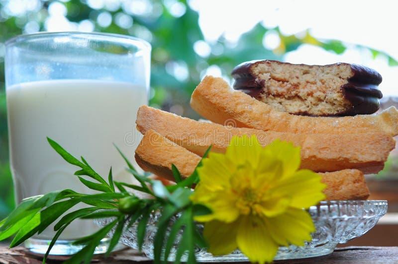 Droog beschuitbrood en een glas geïsoleerde melk royalty-vrije stock afbeelding