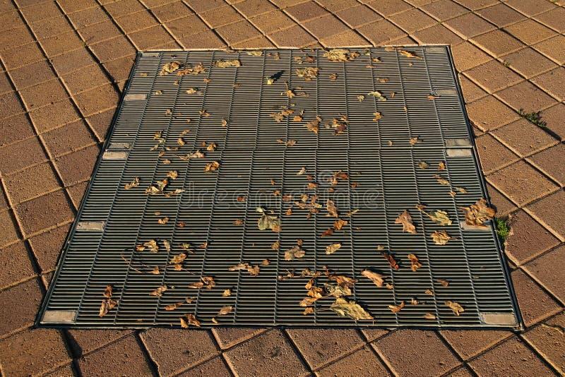 Droog bladeren op een riool royalty-vrije stock afbeelding