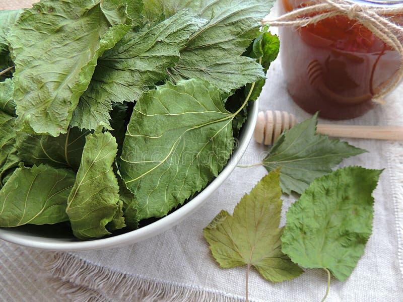 Droog bladeren van blackcurrant en moerbeiboom in een kom en een met de hand gemaakte linnenhanddoek Kruik met honing stock afbeelding