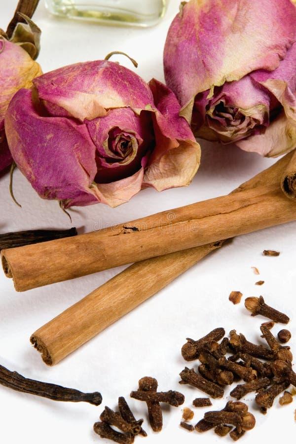Droog bloemen en kruiden. royalty-vrije stock foto's