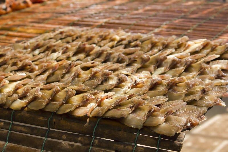 Droog Eenvoudig het voedselmenu van snakeheadvissen stock afbeelding
