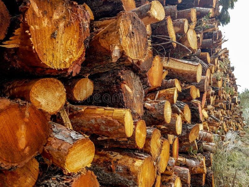 Droog eiken die brandhout in een stapel, gehakt niet geheel hout voor de winter het verwarmen open haard wordt gestapeld Natuurli stock foto's