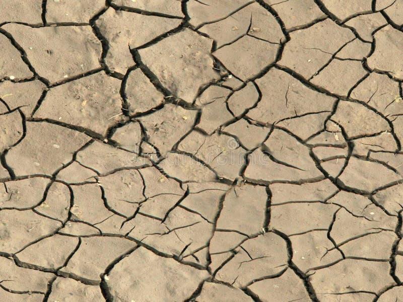 Droog gebarsten grond stock afbeelding
