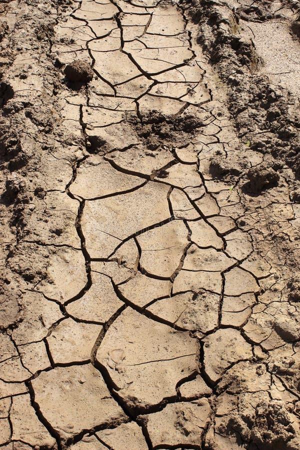 Droog gebarsten modder stock foto
