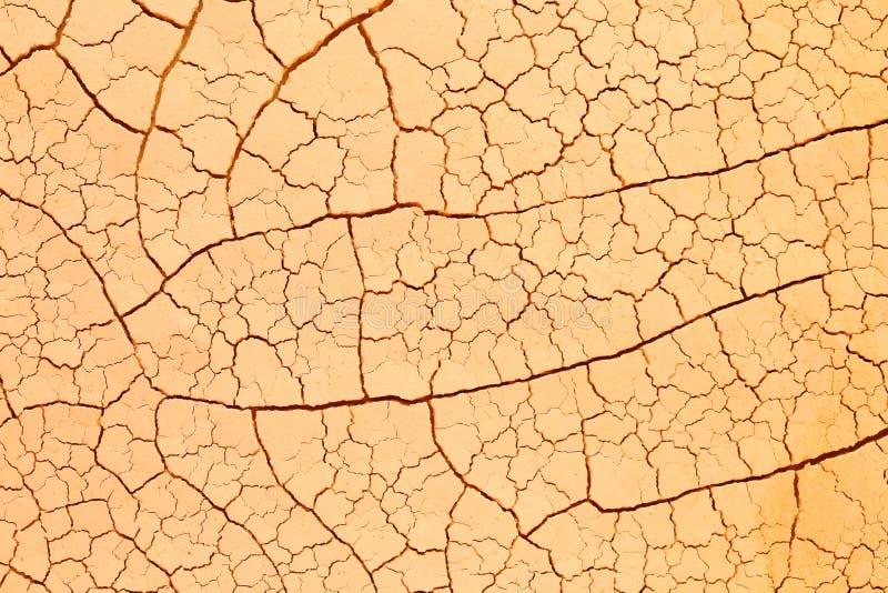 Droog gebarsten woestijn stock afbeeldingen