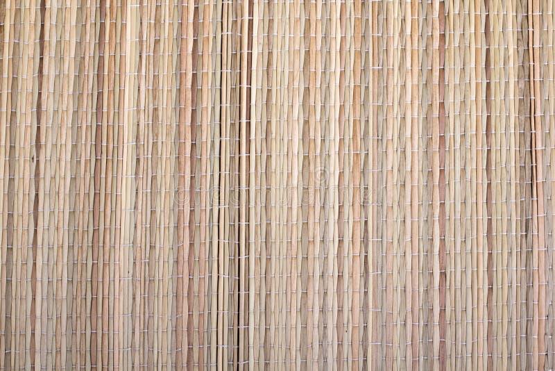 Droog gras, mattextuur stock foto