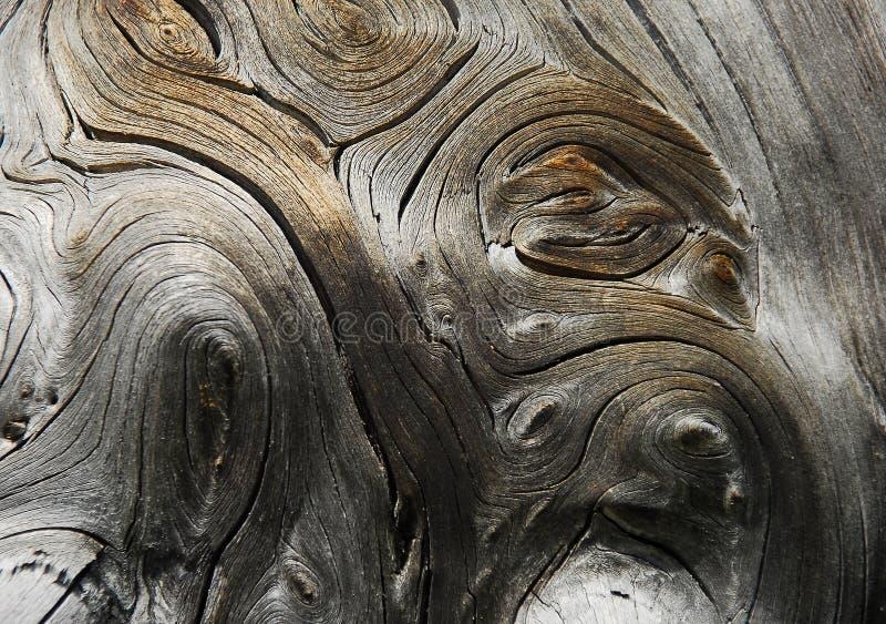 Droog hout stock afbeeldingen