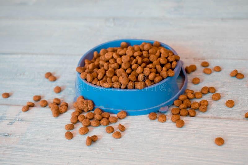Droog kattenvoedsel in blauwe kom stock foto's